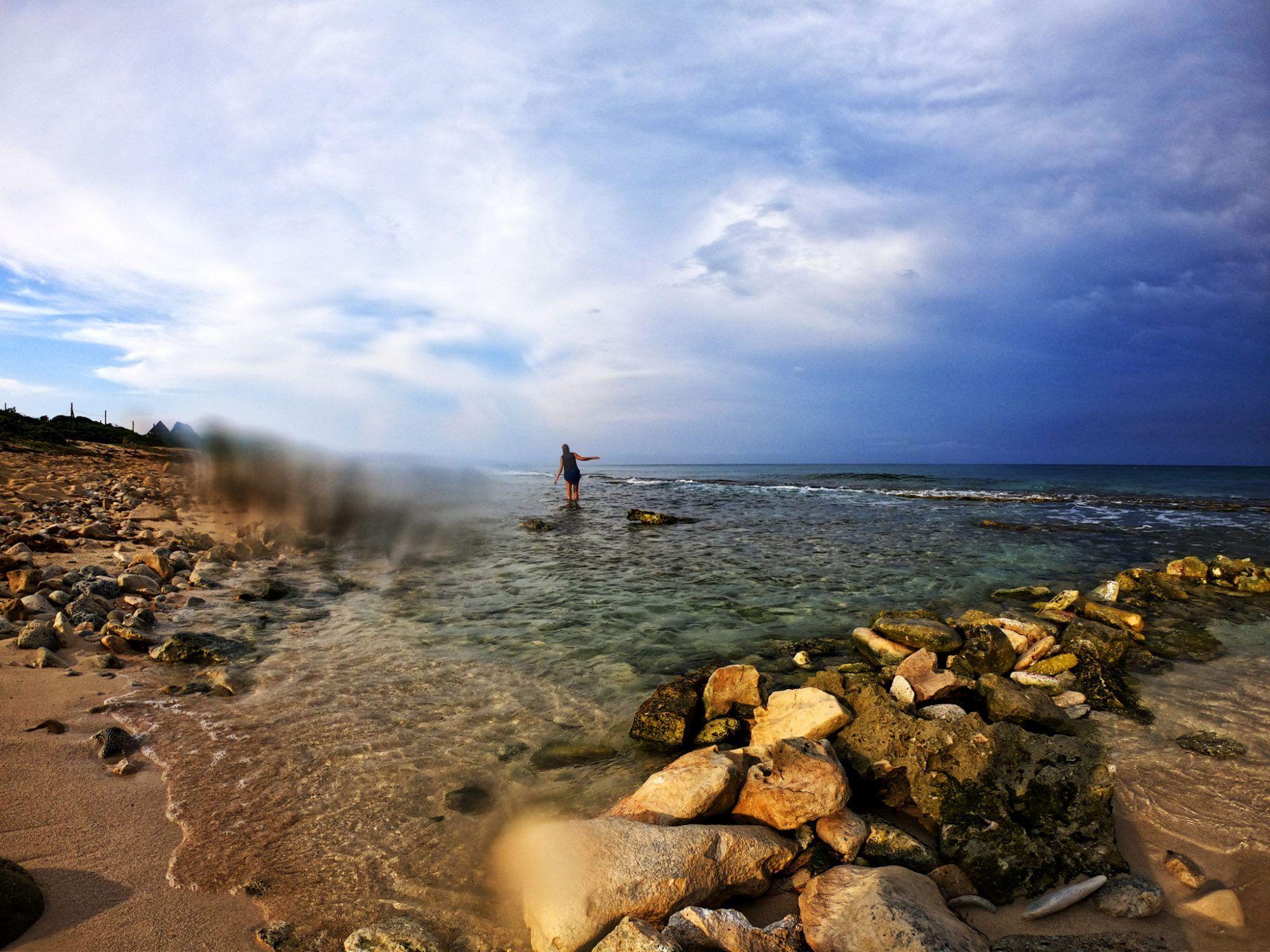 yaguar en el agua